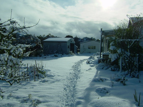 Snow - cold, white and good for the soil?