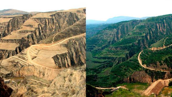 Restoring China's Loess Plateau