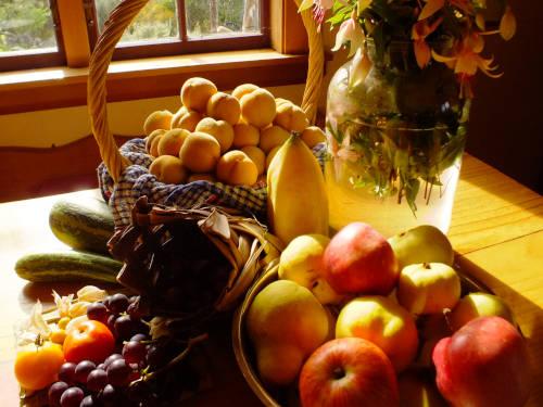 Nourishment for all seasons